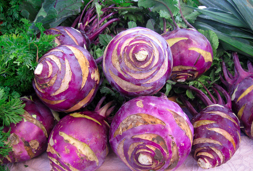 purple kolrabi
